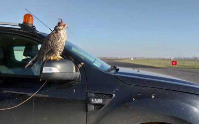 Le risque en milieu aéronautique